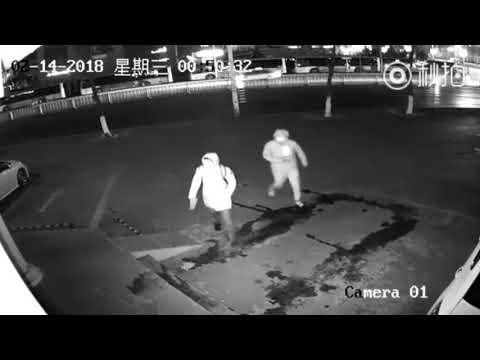 VIDEO | Shanghai politsei otsib neid kahte lolli röövlit