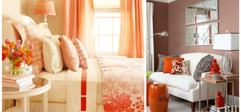 ФОТО │ Какие цвета подходят к оранжевому в интерьере