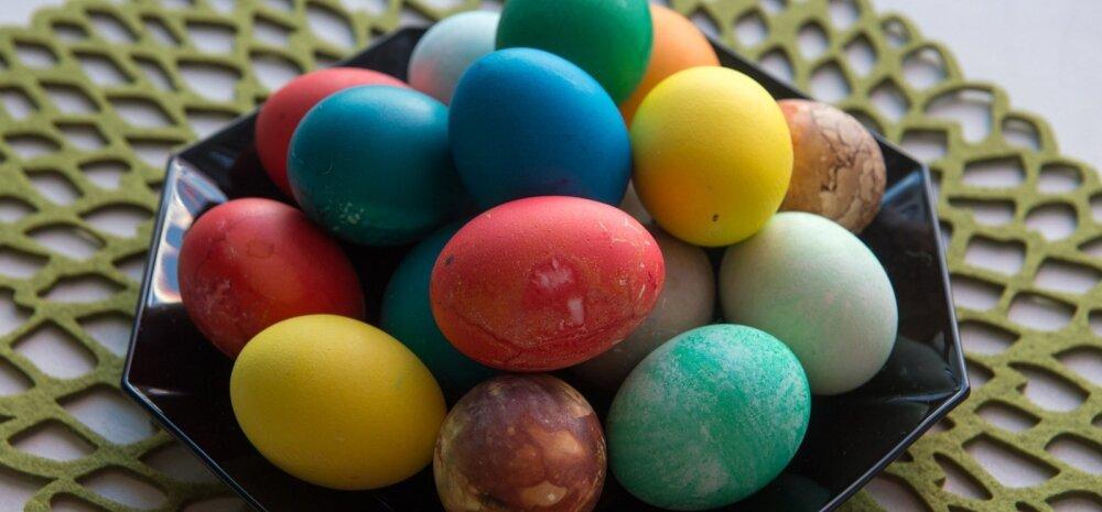 SUUR LIHAVÕTTESPIKKER: kõige vajalikumad nipid munade keetmiseks, 100 erinevat võimalust munade värvimiseks ja parimad munaretseptid
