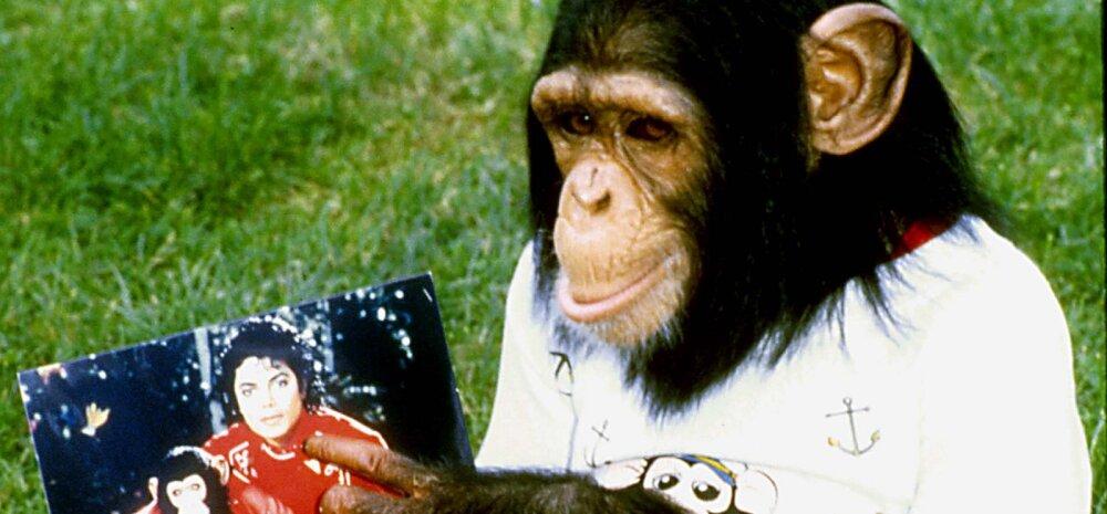 5 maailmakuulsat inimest, kes on pidanud kummalisi lemmikloomi