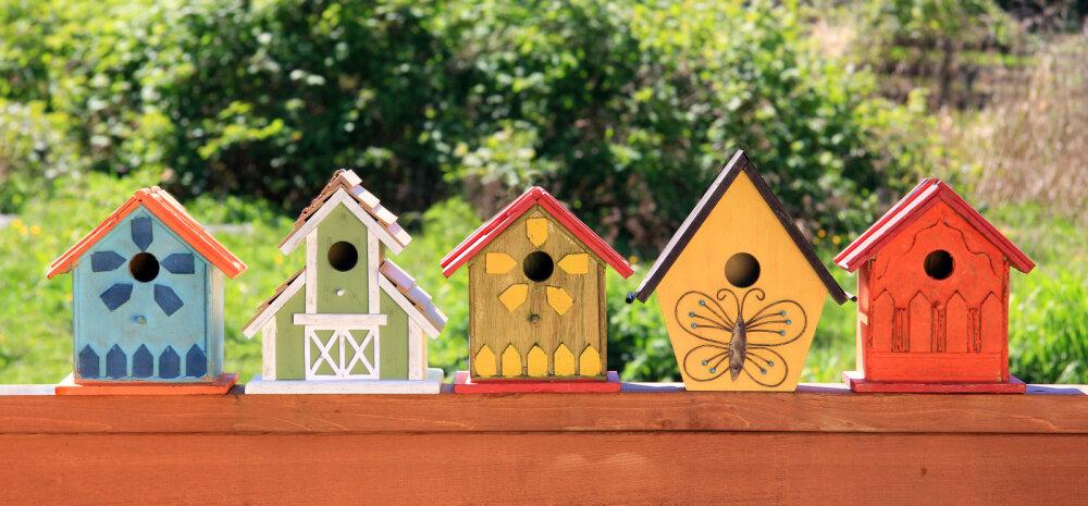 Miks tuleks lindude pesakastid üles panna augustikuus?