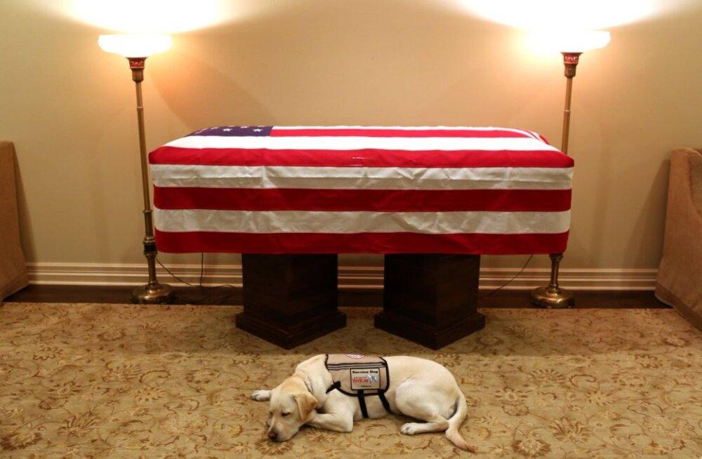 FOTO | George H.W. Bushi koer Sully saatis peremehe tema viimasele teekonnale