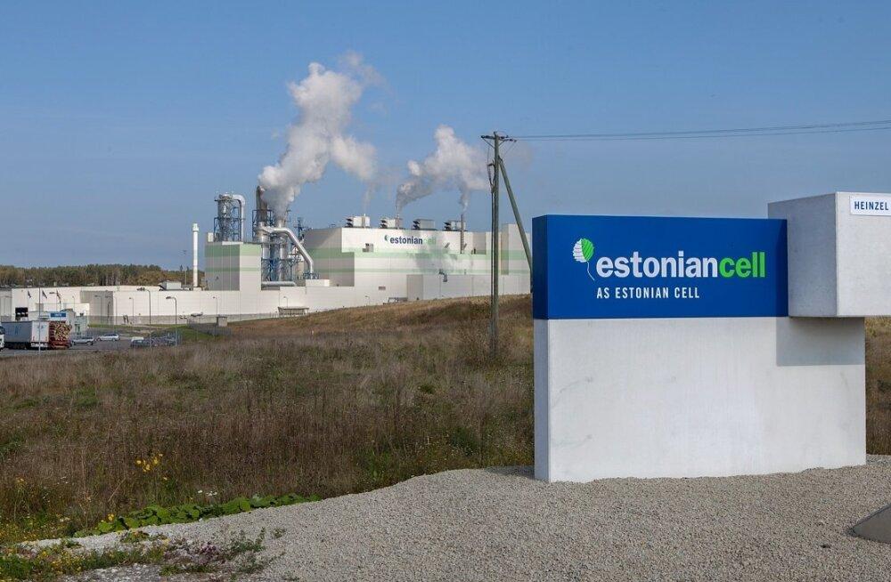 AS Estonian Cell sai lekkivast heitveetorust teada aasta lõpus ning asus kohe tegutsema, et olukord kaardistada. Praegu teadaoleva põhjal on heitvesi poolteist aastat jooksnud merre vales kohas.