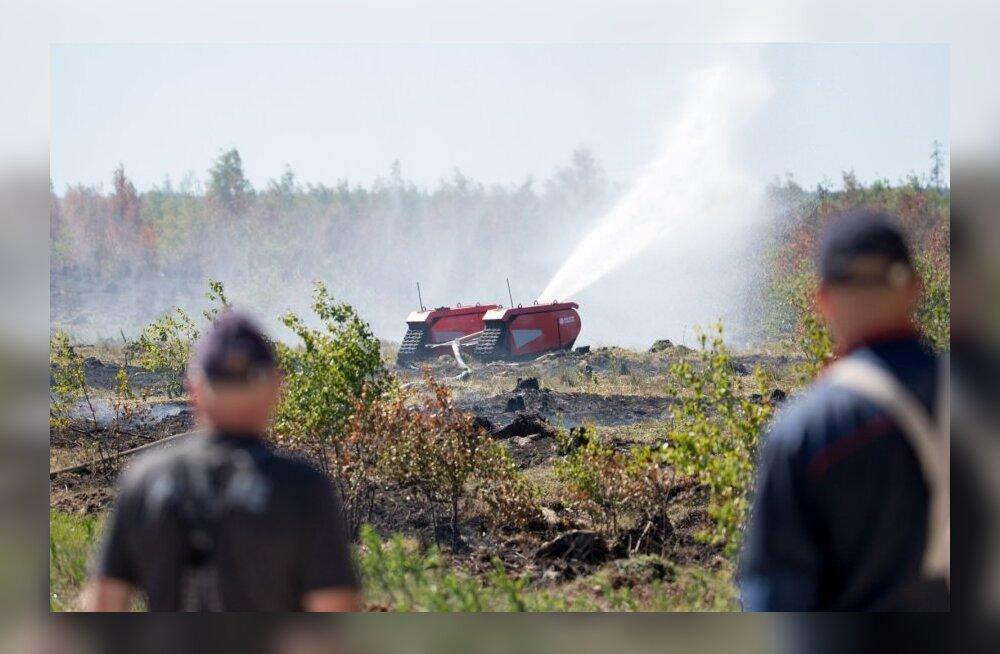 Центральный полигон Сил обороны Эстонии вновь во власти огня