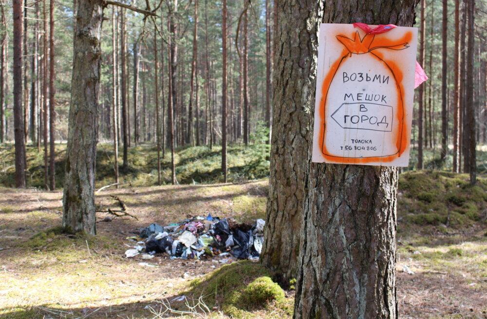 Трехкратное повышение тарифов на вывоз мусора нанесет серьезный удар по лесам в окрестностях Нарвы