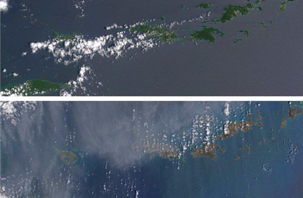 Puhas töö: Kariibi mere varem rohelised saared on pärast Irma üle pühkimist tumepruunid