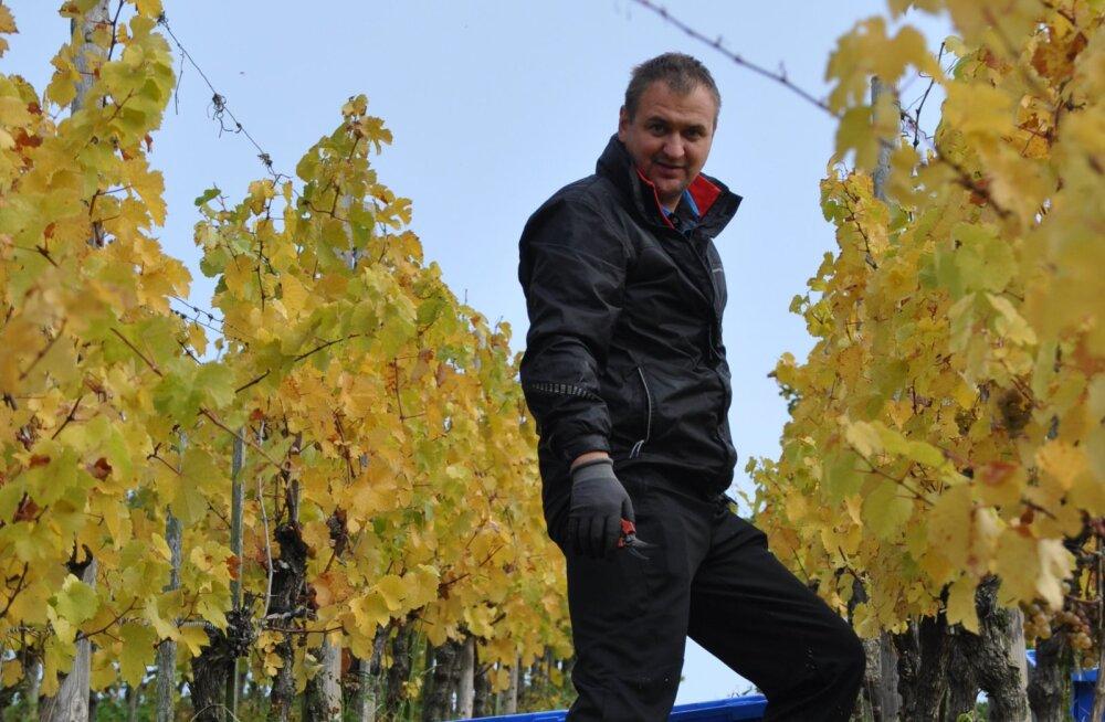Seiklused koos veiniga ehk kuidas eesti mees Luksemburgis korjel käis