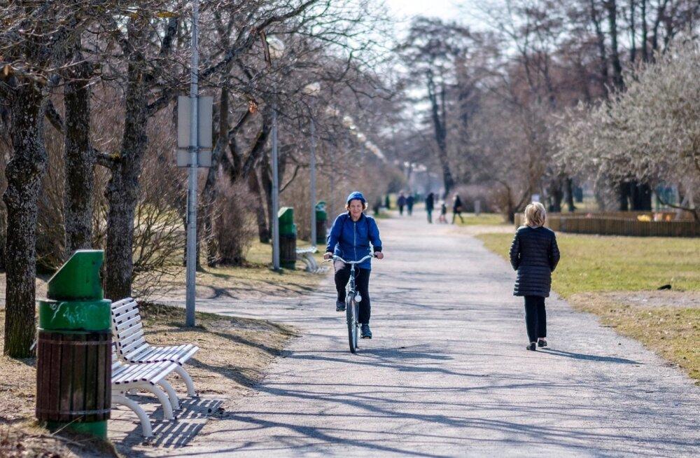 Kevad Tallinnas