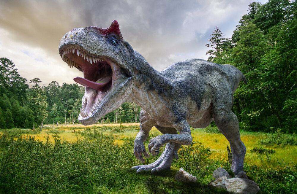 JAHMATAV LEID | Arvatakse, et leiti dinosauruse laip, millel on veel liha luudel