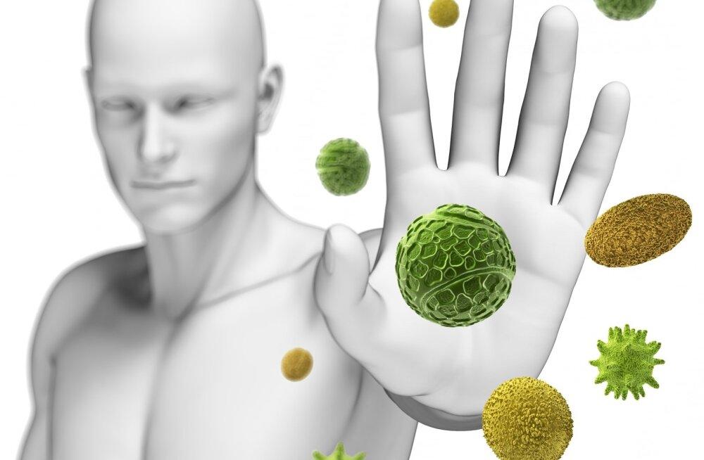 """Maa- ja linnaelu tahud: allergia, suhkurtõbi ja """"vanad sõbrad"""""""