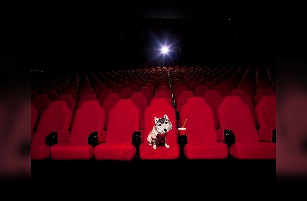 Фильмы про селелазку фото 427-639