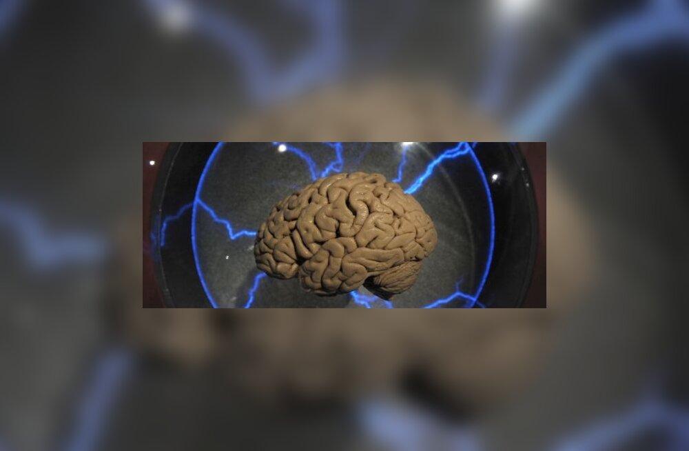 Helilained aitavad lõhkuda vereklompe ajus