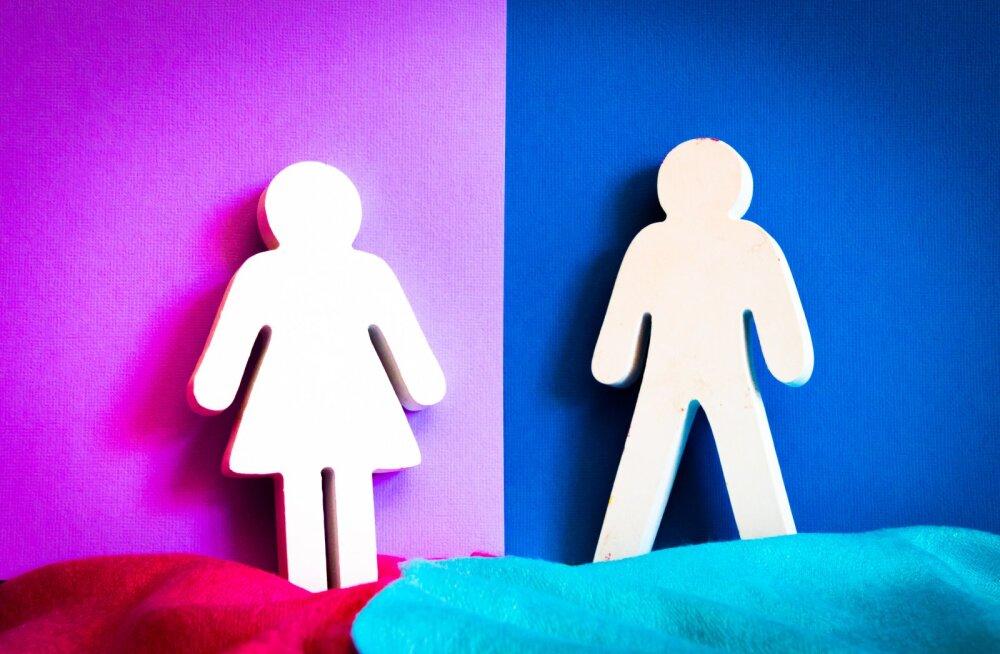 Мужской и женский мозг: различия