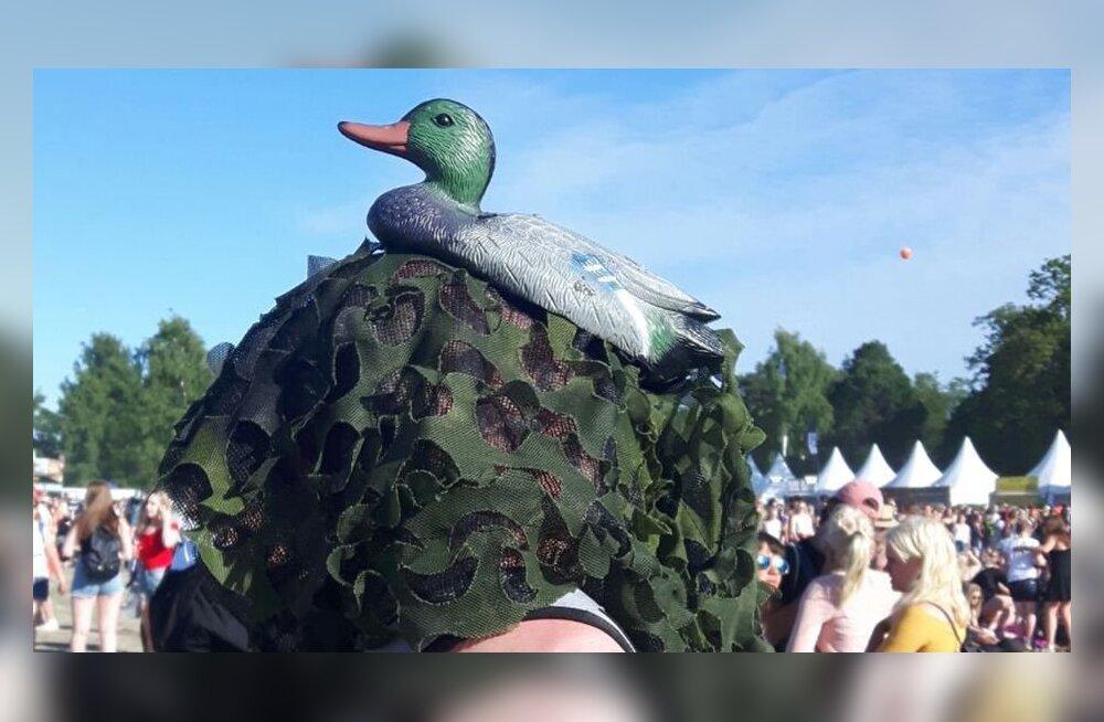 Замаскированный под утку финн пытался проплыть без билета на территорию фестиваля Ruisrock