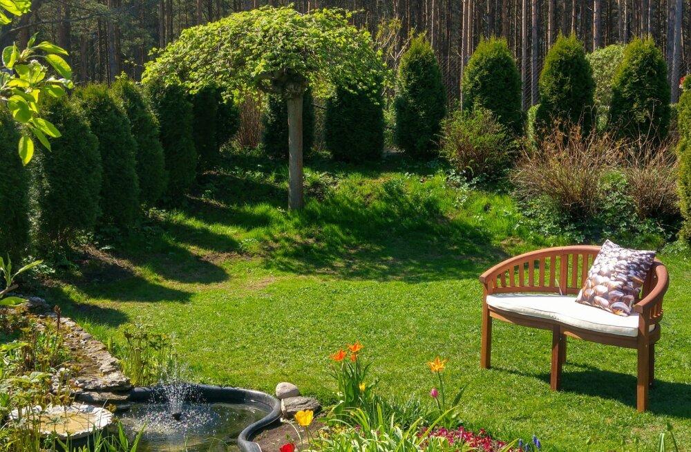Juuni esimesel nädalavahetusel saab piiluda Eesti kaunitesse aedadesse