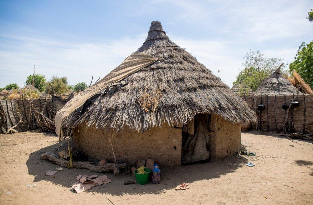 Aafrikast tasub õppida ilmastikule sobilikku ehituskunsti.