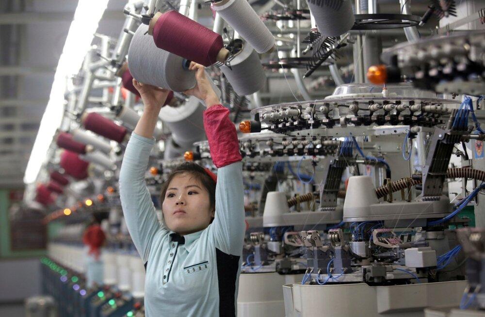 Paljud põhjakorealased on käinud Euroopas sama karmides tingimustes tööd rügamas kui kodumaal. Pildil Pyongyangi sokivabriku tööline.