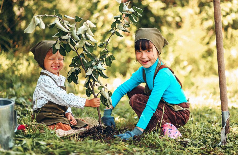 #OMAPUU kutsub kõiki eestimaalasi üles istutama endale oma puu