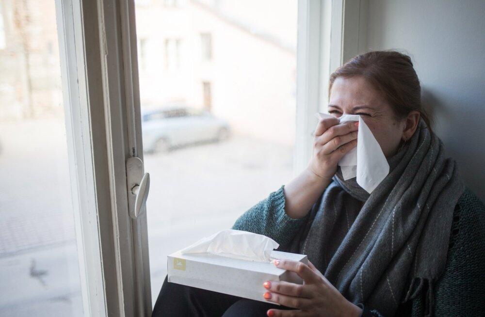 Gripp ja nohu