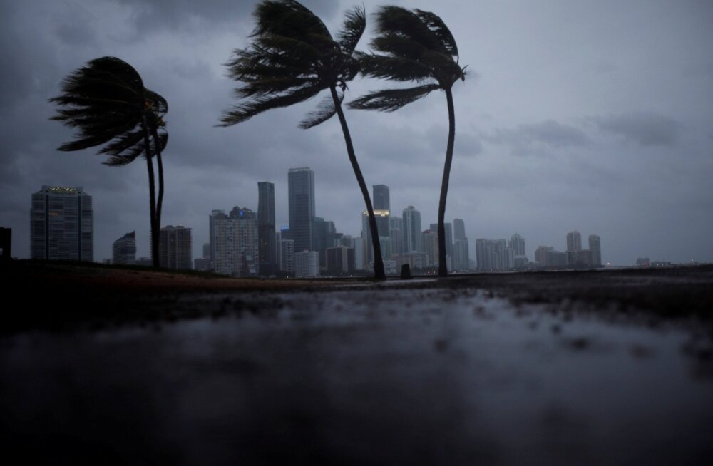 Orkaan Irma Florida eel