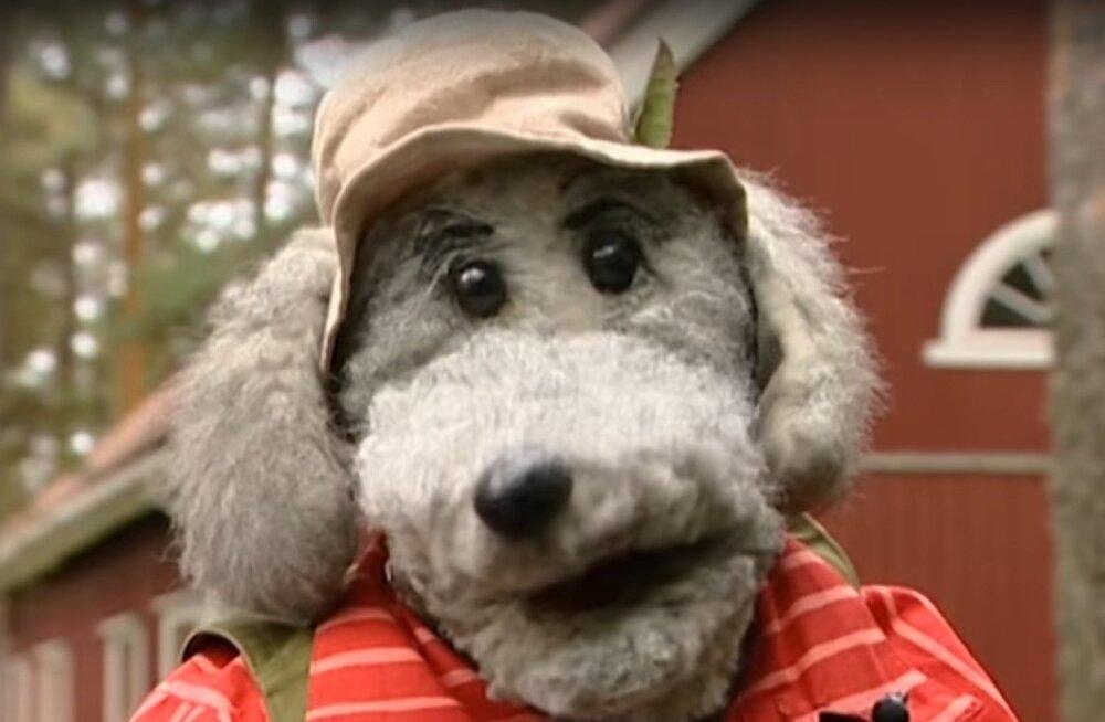 """""""Pikku Kakkoneni"""" kaassaatejuht koer Ransu sai staariks nii seal- kui ka siinpool Soome lahte."""