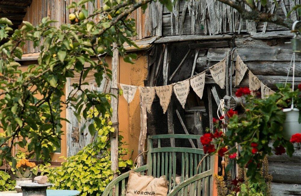 Voronja galerii Peipsi ääres