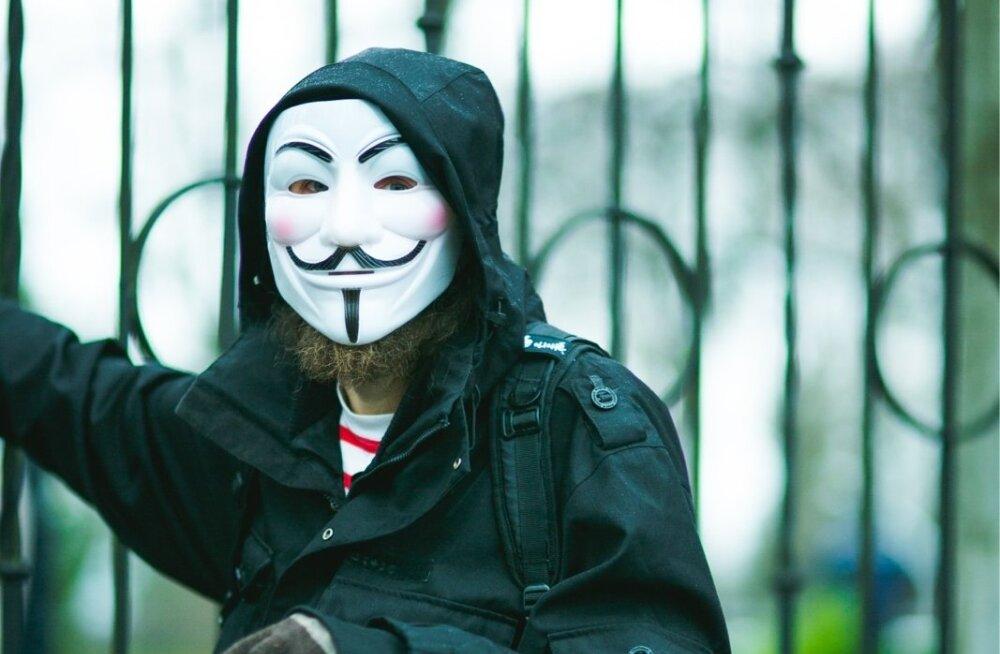 Meeleavaldus valeliku poliitika vastu, Tallinnas 17.11.2012