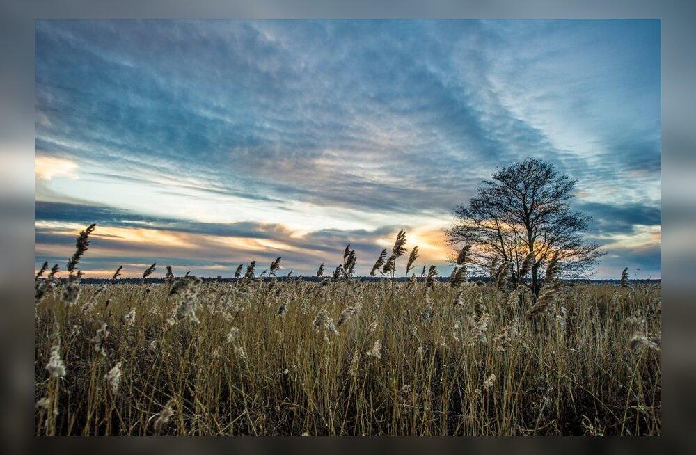 Lummavalt kaunis päikeseloojang haaberstis
