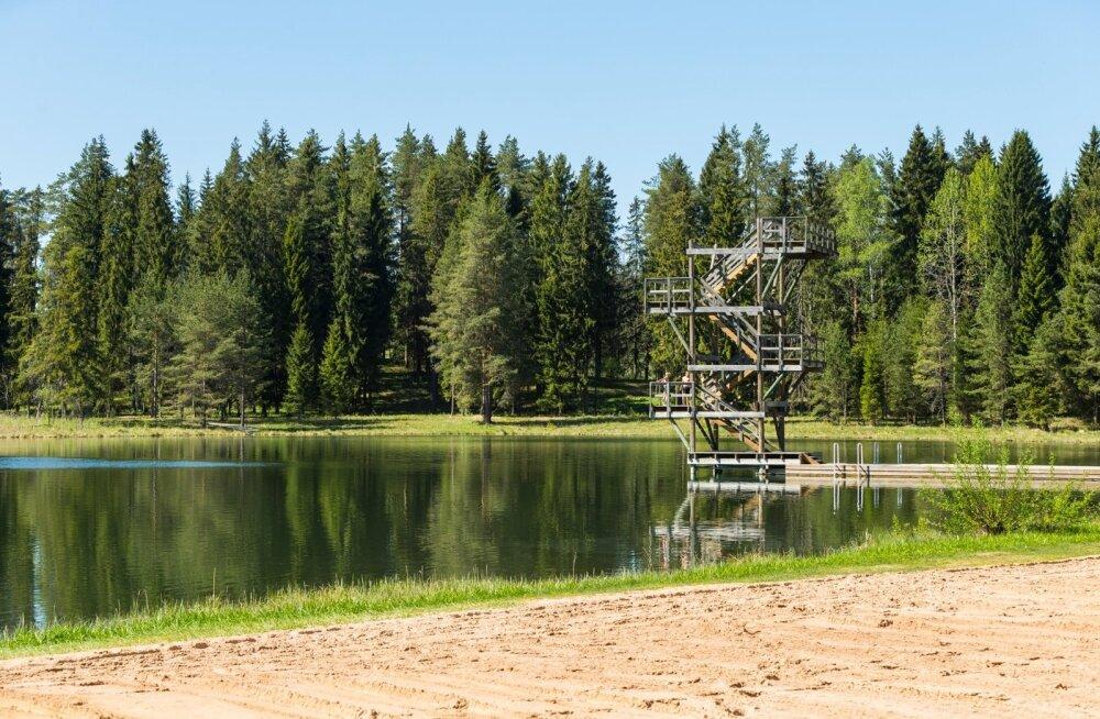 Tõrva Vanamõisa järve hüppetorn