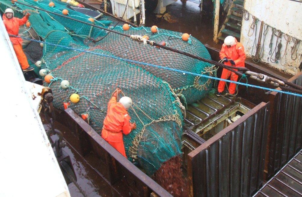 Reyktali traallaevad püüavad krevette külmadel meredel