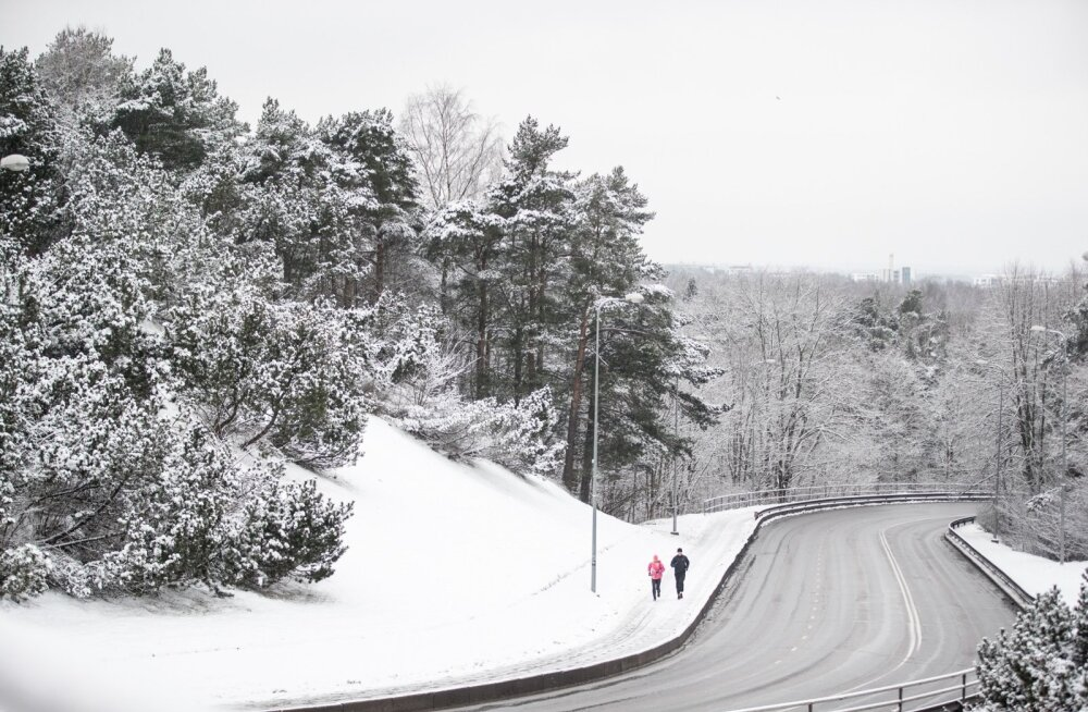 Lumi Nõmmel