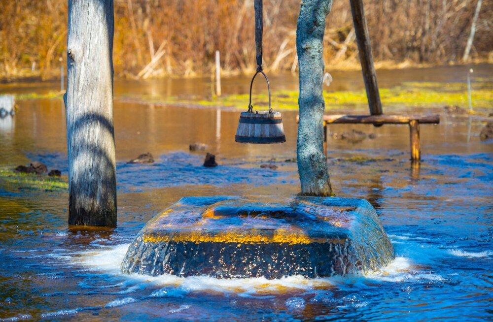 """Kuna Nabala-Tuhala looduskaitsealal on kogu lubjakivi põhjavee all, siis kardavad kohalikud, et kaevandamine toob kaasa pöördumatud muudatused ning rikuks senise loodusliku tasakaalu. Pildil """"keeb"""" kuulus Tuhala nõiakaev, üks loodukaitseala tuntumaid magn"""