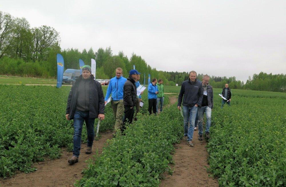 Esimesed põllupäevad korraldas taimekaitsefirma BASF.