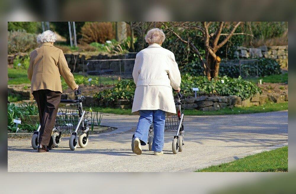 Rulaator toetab kõndimisel ja võimaldab ette võtta pikemaid käike