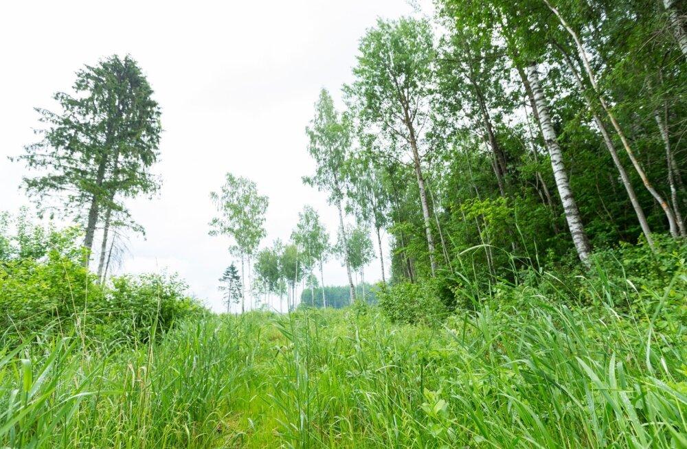 VERSUS | Kas Lõuna-Eesti peaks maksma erimaksu?