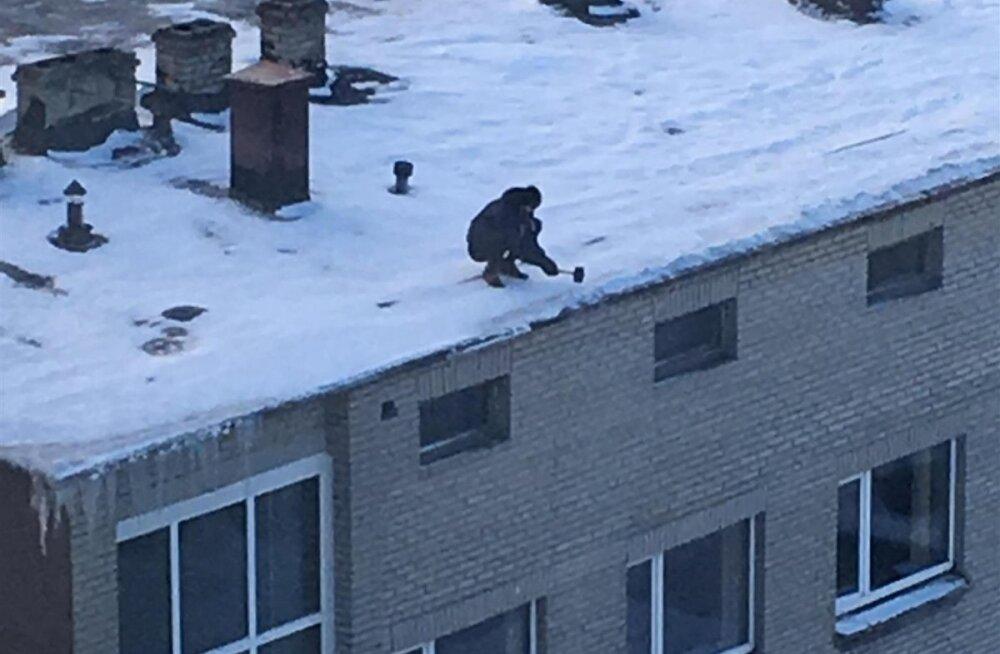 ФОТО: Ни страховки, ни касок! Как в центре Таллинна очищают крышу от сосулек