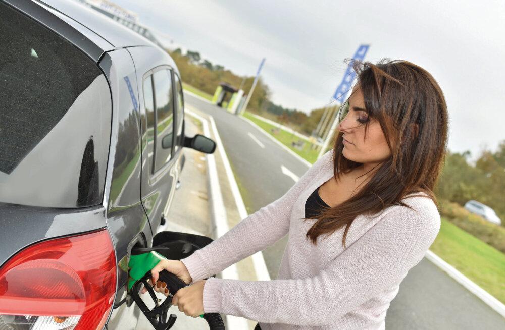 Biokütus: millele sobib ja millele mitte?