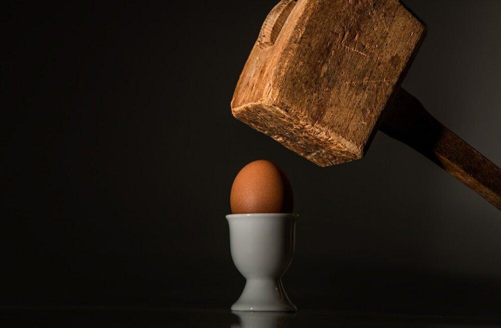 Loomakaitseorganisatsioon Nähtamatud Loomad tahab Prismas puurikanade munade müüki lõpetada – milline on Prisma seisukoht?