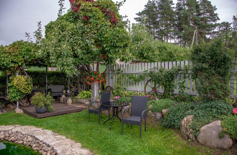 Maakodu,Teemeistri 1,Niina Roslander, aed, Vana Võidu, Viljandimaa