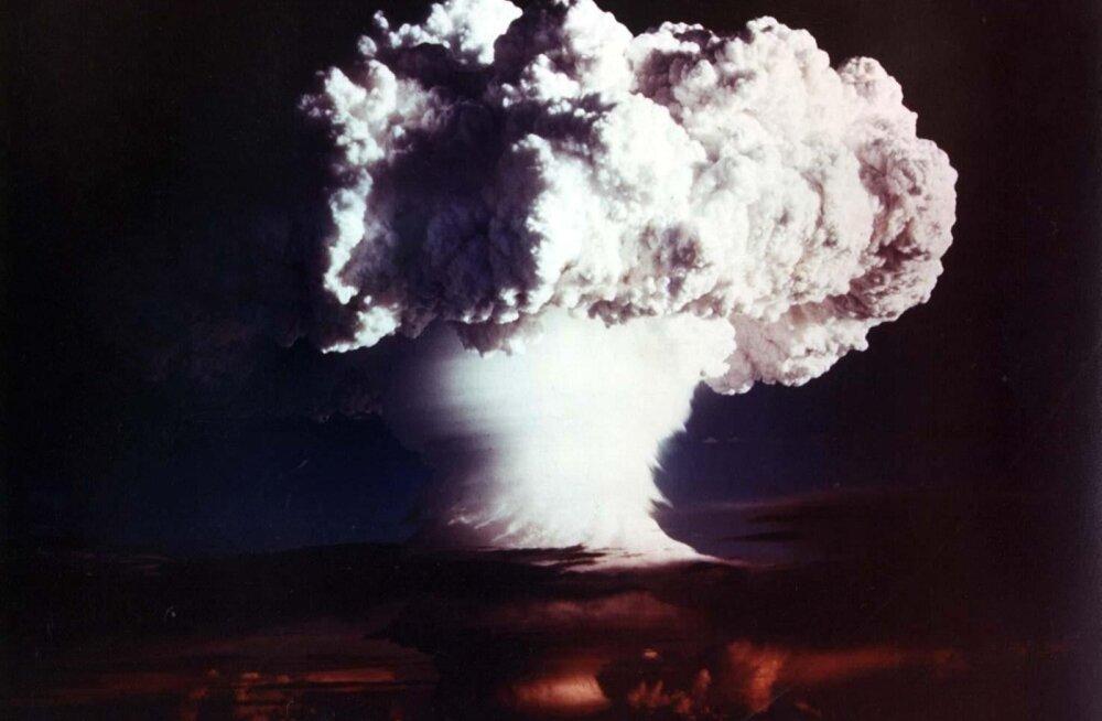 Tuumapomm
