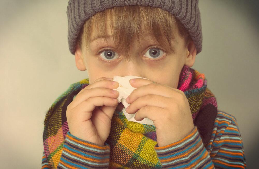 Apteeker: Just see harjumus tagab viirustehooajal võimaluse neist puutumata jääda