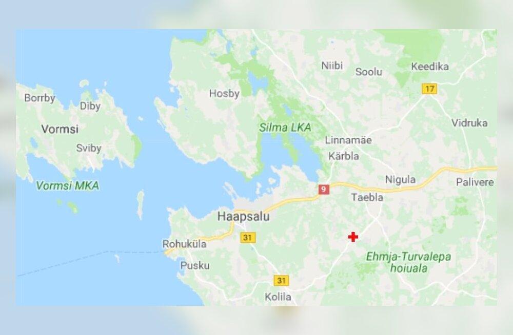 Eesti maavärinaid jälgivad soomlased: Helsingi ülikooli automaatika registrerib iga viimsegi võbina