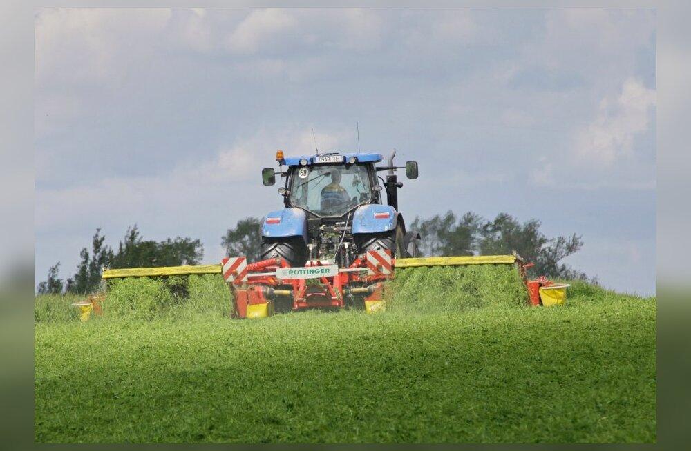 Hirm saab tõeks: osal viljapõldudest on tarvis hakata taas rohtu kasvatama