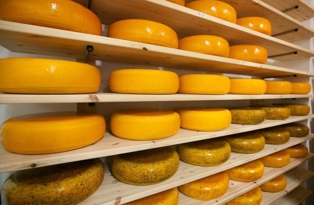Сыр губит женщин, а йогурт — спасает
