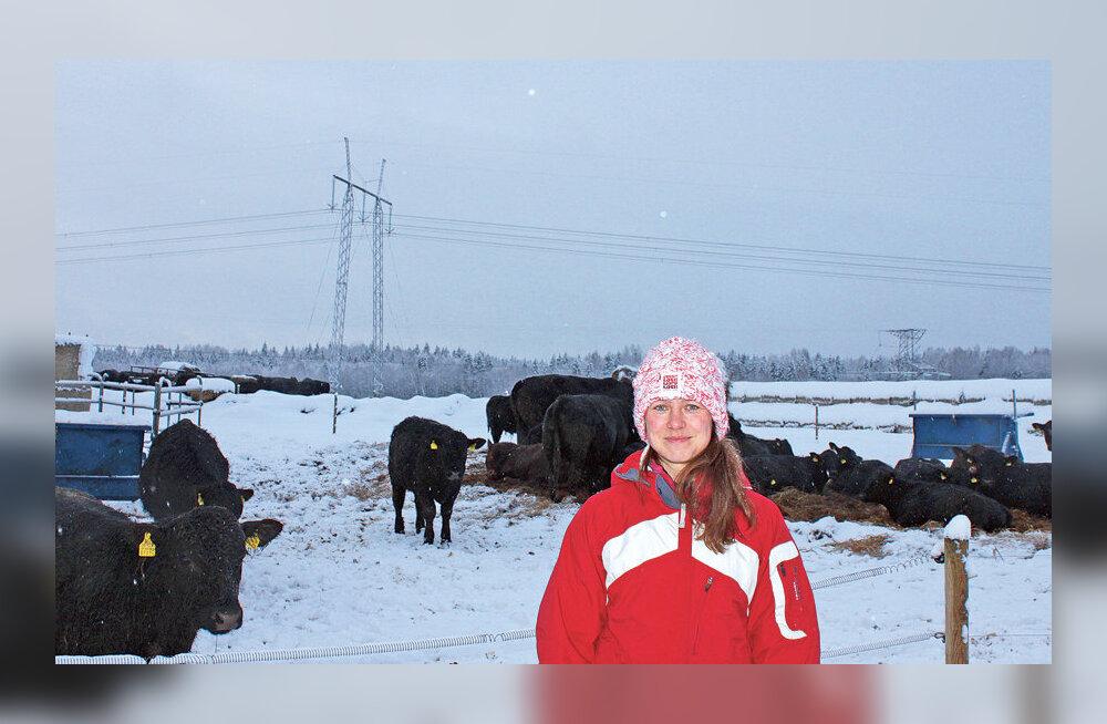 Karjakasvatajatele tagab edu kiire areng