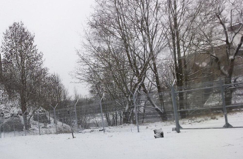 ФОТО читателя Delfi: Россия отгораживается от Эстонии забором, ивангородцы очень недовольны