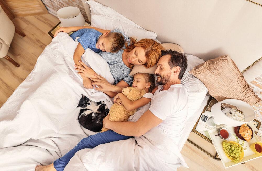 Perre sünnib beebi| Mida teha, et lemmikloom armukadedaks ei muutuks