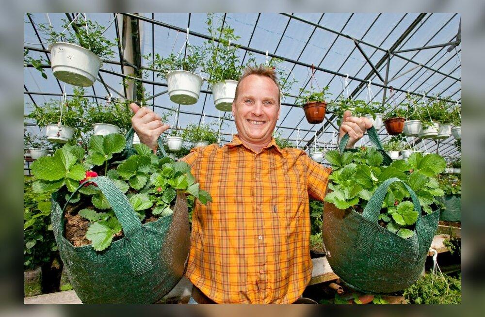 Tiit Juhani: ilma poolest oli aianduses hea aasta