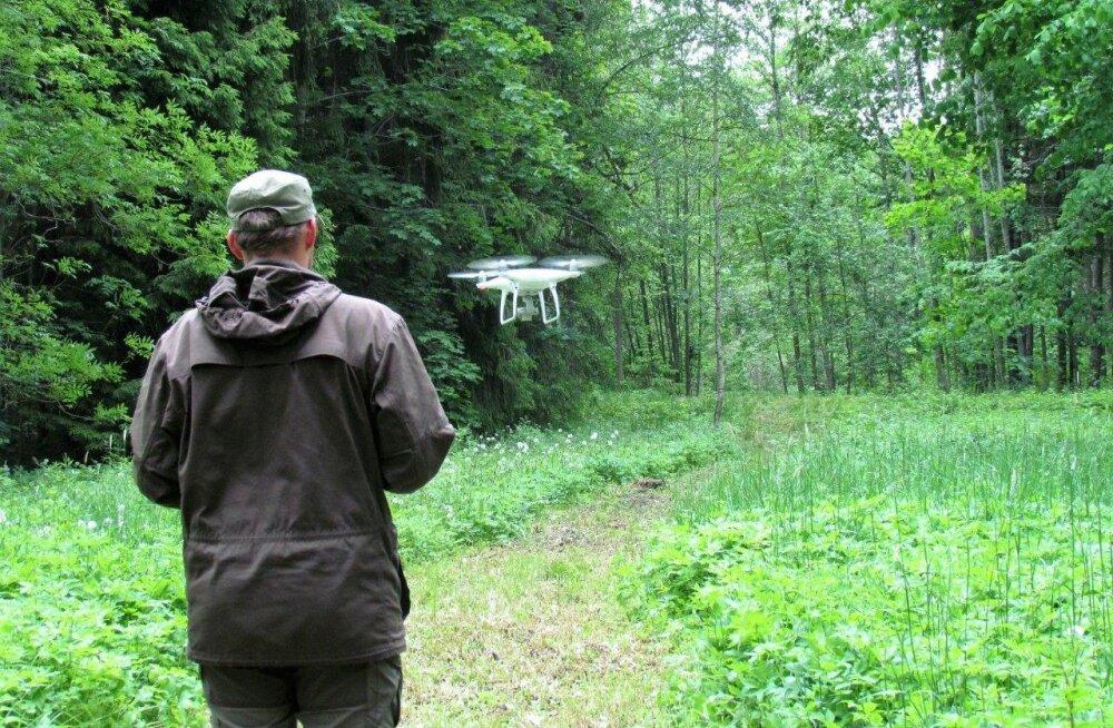 Leili metsalood: Droonid metsade kohal