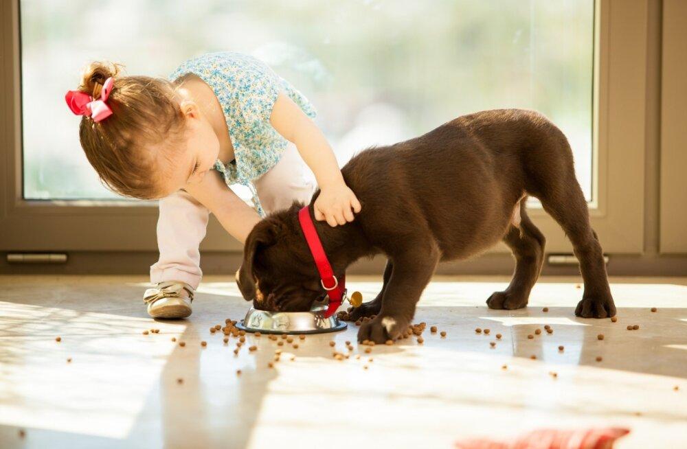 Loomade kohtlemist peab õppima ja ka loomad peavad õppima.
